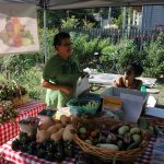 Westside Growers Market Kicks Off Wednesdays 5-7pm